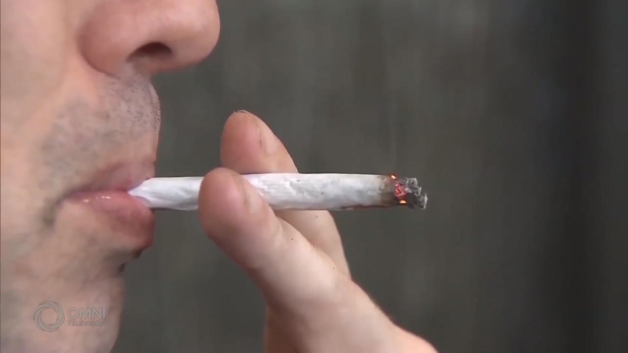 药剂师提醒公众认识大麻对健康的影响 – Oct 17, 2018 (ON)