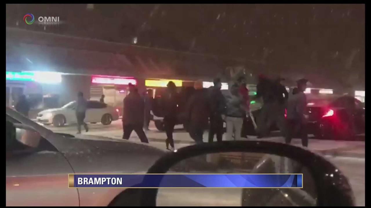 Men arrested for Brampton brawls 'not Canadian citizens'