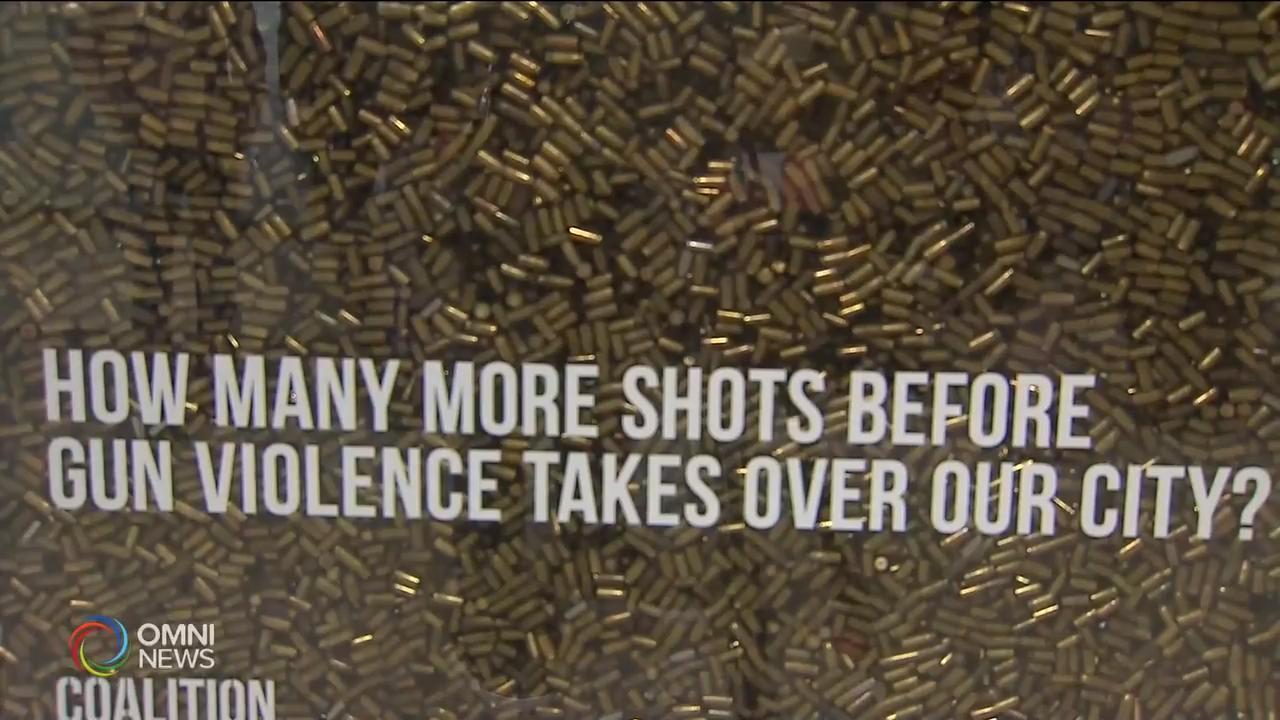 多伦多市民发起呼吁禁枪活动 – Nov 13, 2018(ON)