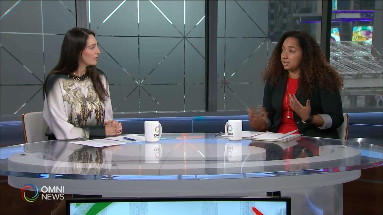 Diversity & Inclusion – Jamile Cruz Int.