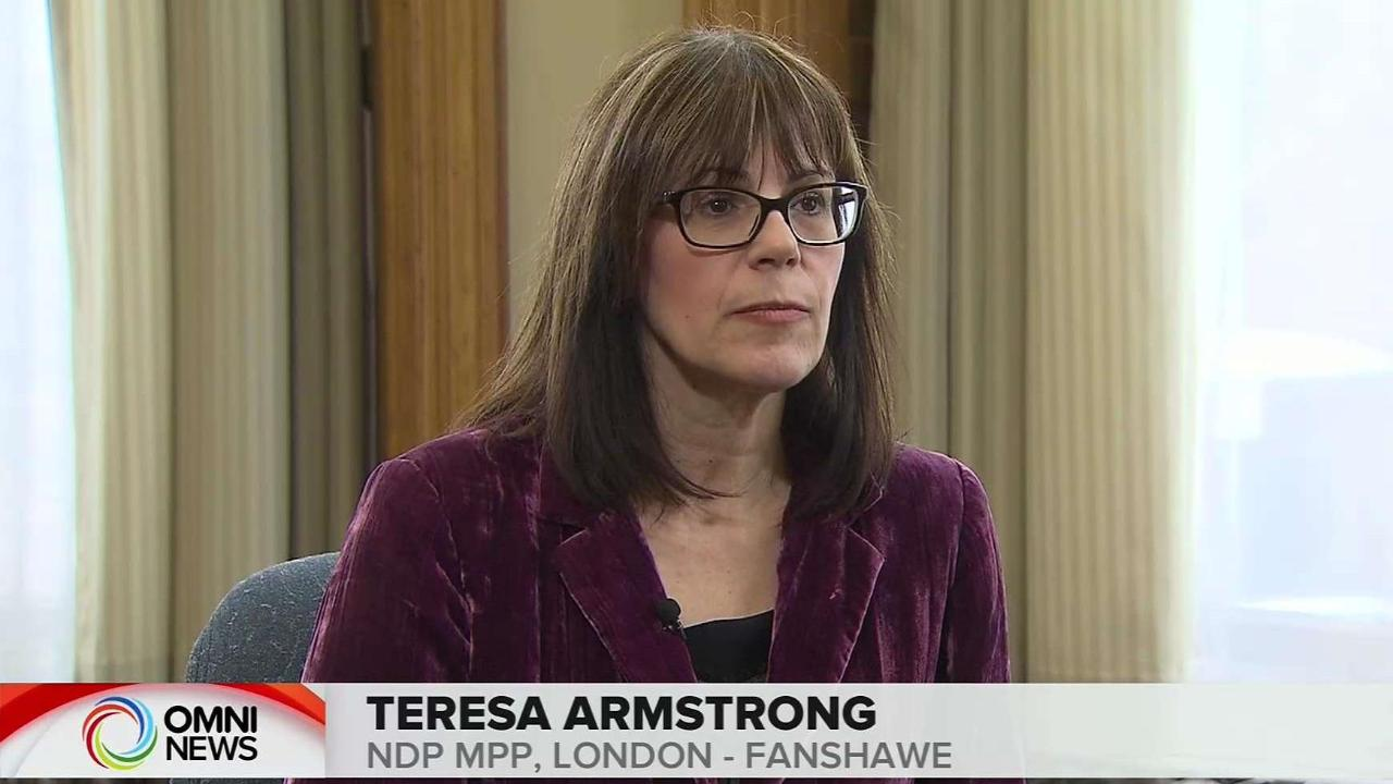 INTERVIEW WITH NDP MPP TERESA ARMSTRONG
