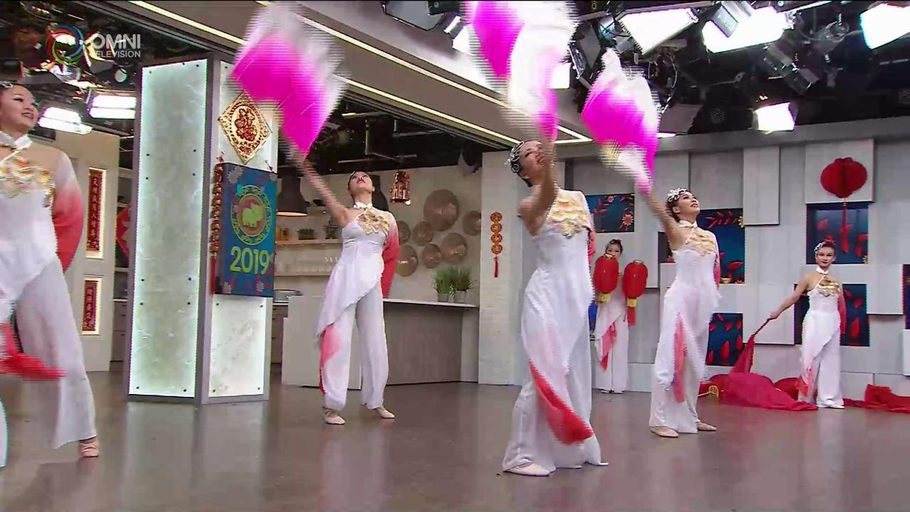 第五節:菁華藝術協進會表演精彩賀年舞蹈