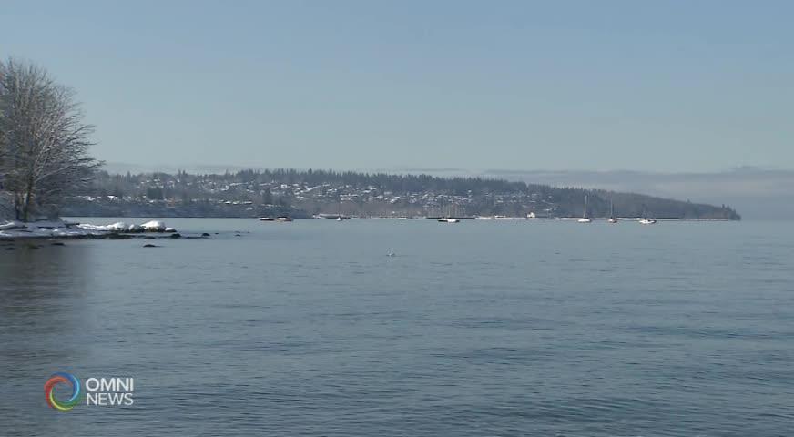 沿岸幾十艘被遺棄船隻 將被政府統一清理(BC) – 2019FEB14