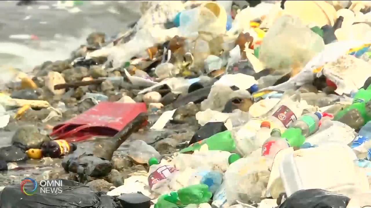省府就全面禁用塑料购物袋徵询省民意见 – Mar 11, 2019(ON)