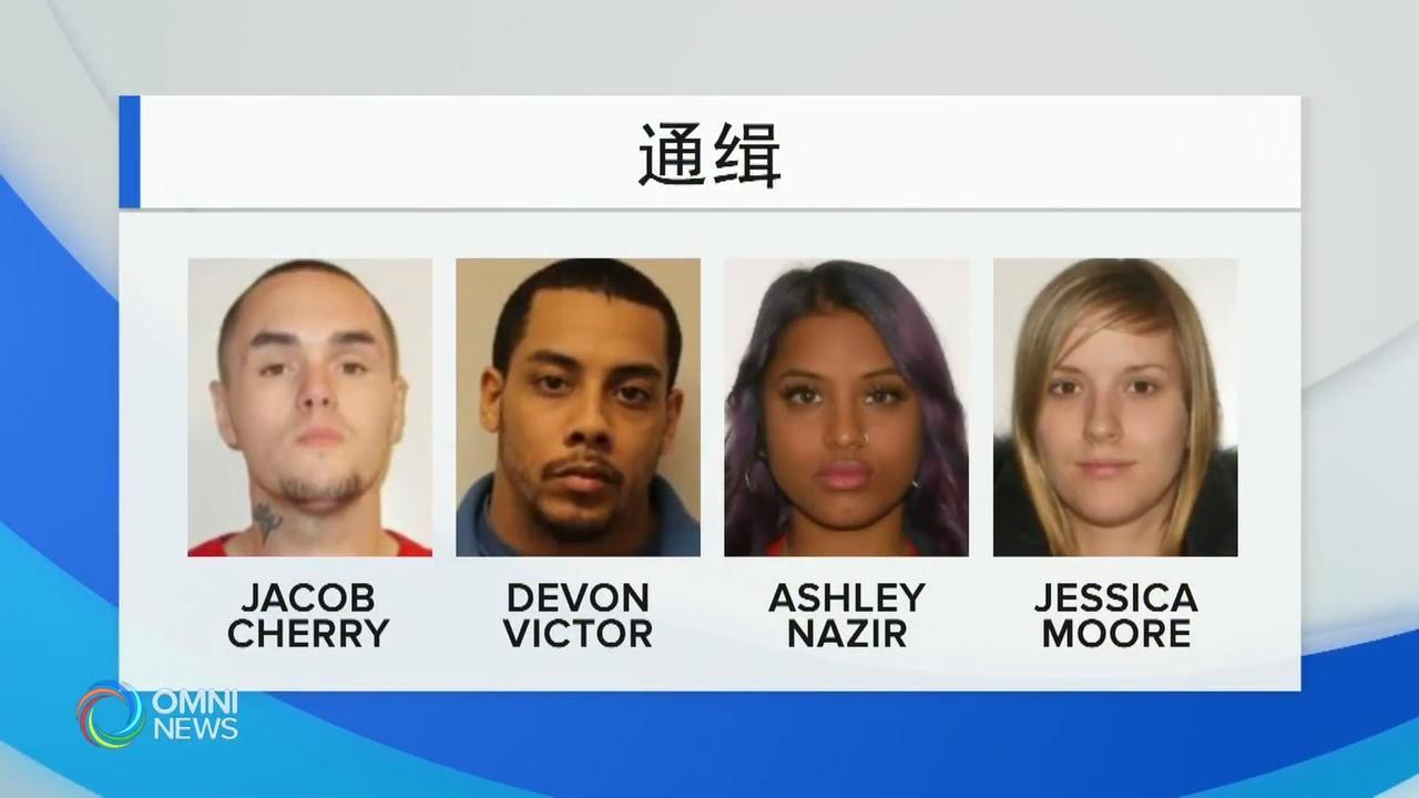 万锦市商场去年珠宝店抢案,共六人被捕,四人仍在逃 – Jul 17, 2019 (ON)