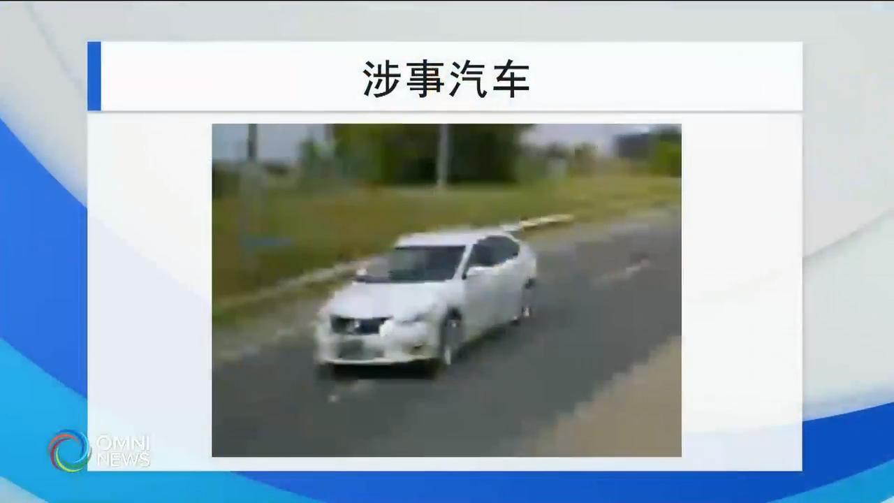 警方公布致命车祸的涉案车辆照片 – Aug 22, 2019(ON)