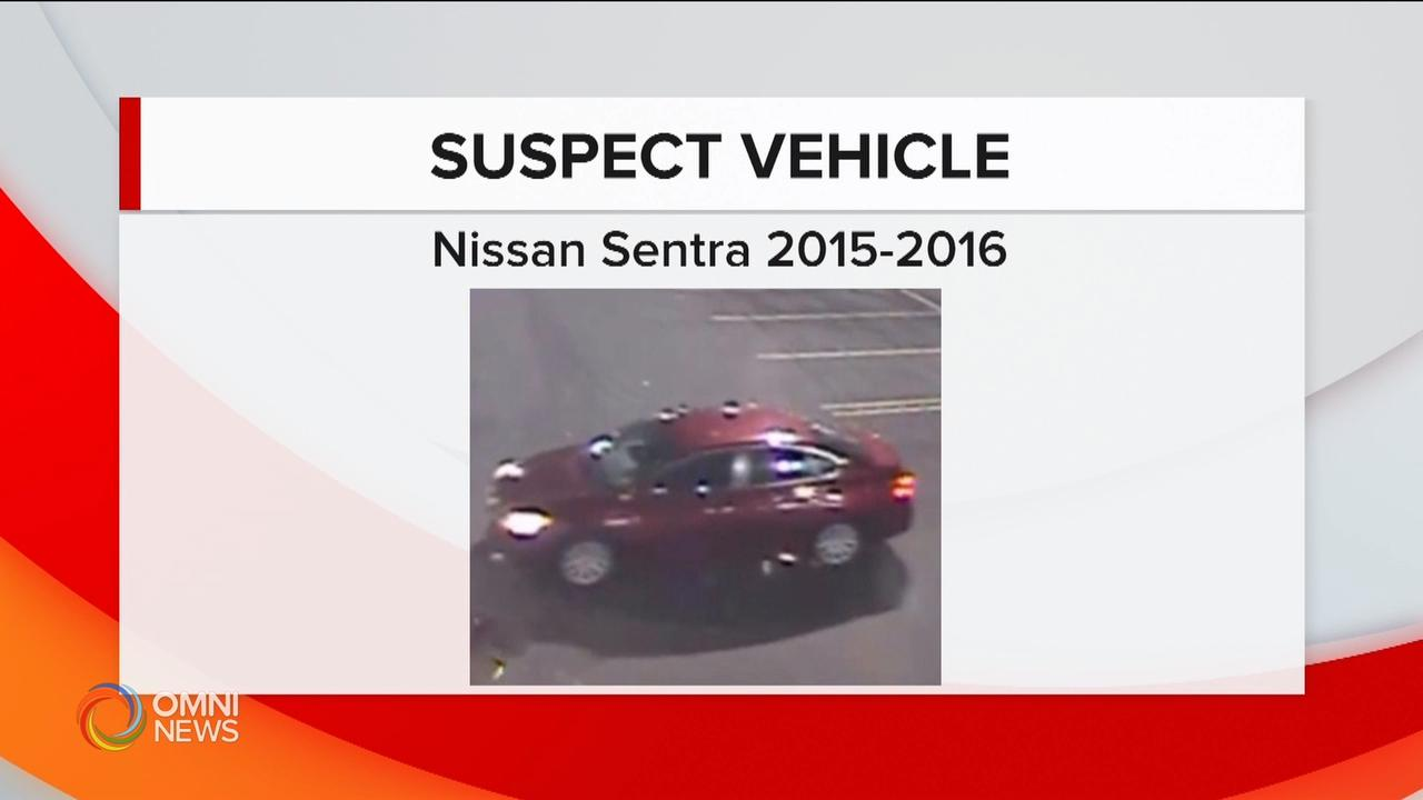 New info in Brampton sex assault