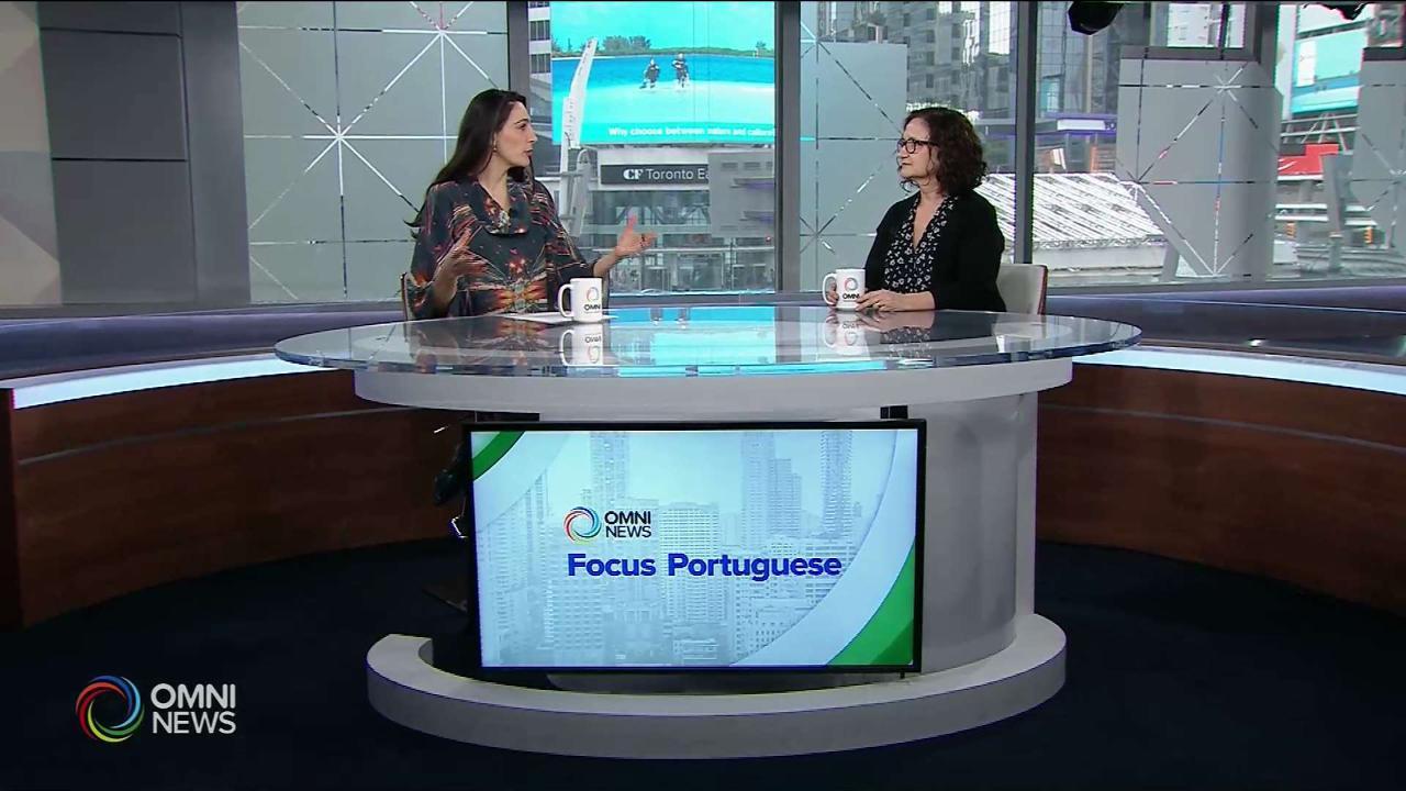 Tax season with accountant Filomena Silveira