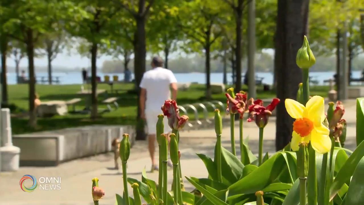 多倫多市今年首個酷熱警報 — May 25, 2020 (ON)