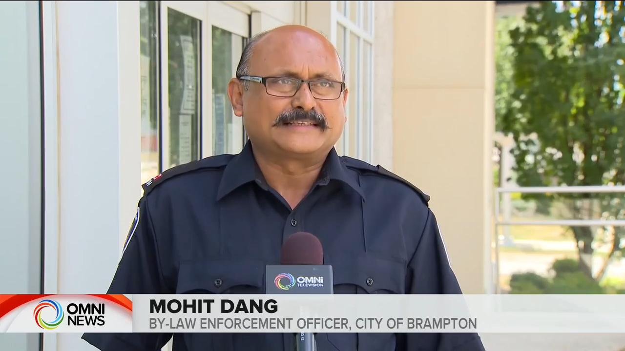 By-law officer reacts to Brampton house party